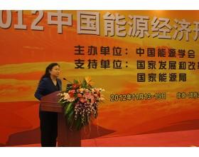 中电投资副总经理张晓鲁在2012中国能源经济形势报告会做精彩发言 (4610播放)