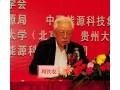 中国能源学会二届一次会员大会在贵阳圆满胜利召开