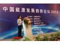 国家发改委能源经济和发展战略研究中心副主任 刘小丽 (1图)