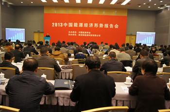 2013中国能源经济形势报告会 (3图)